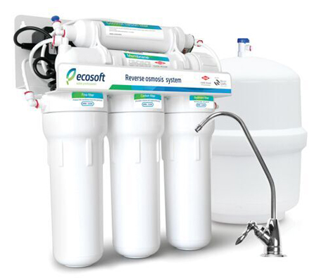 Ecosoft 5 Stage RO System